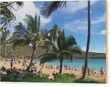 Hanauma Bay Beach Wood Print