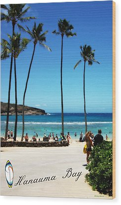 Wood Print featuring the photograph Hanauma Bay by Mindy Bench