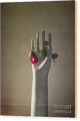 Hand Holding Rose Wood Print by Terry Rowe