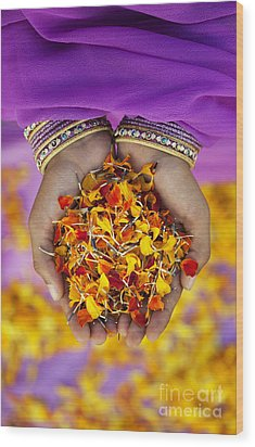 Hands Holding Flower Petals Wood Print by Tim Gainey