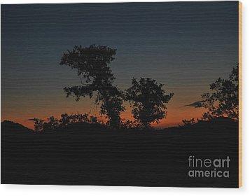 Sense Of Freedom Wood Print