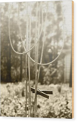 Hang It Up Wood Print by Kristie  Bonnewell