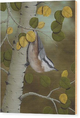 Hanging Around-red Breasted Nuthatch Wood Print