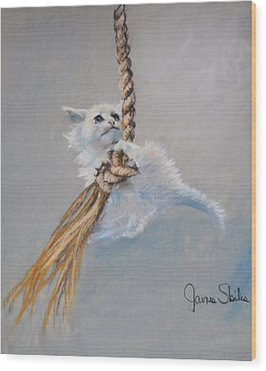 Hanging On Wood Print by James Skiles