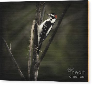 Hanging Out Wood Print by Cris Hayes