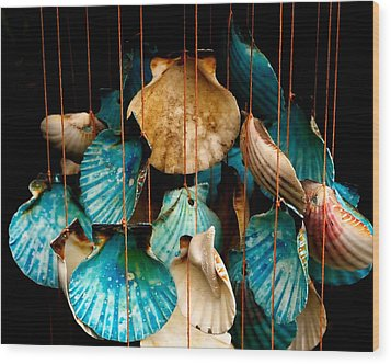 Hanging Together - Sea Shell Wind Chime Wood Print by Steven Milner