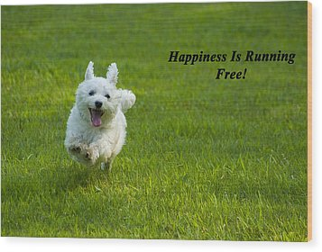 Happiness Is Running Free Wood Print