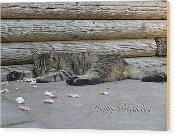 Happy Birthday Sleeping Cat Wood Print by Michele Wright