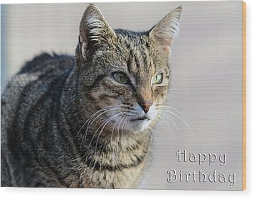 Happy Birthday Tabby Wood Print