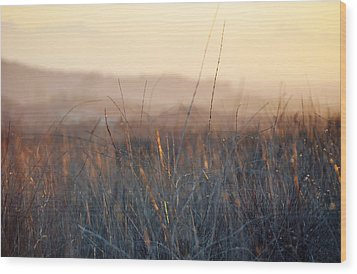 Wood Print featuring the photograph Happy Camp Canyon Magic Hour by Kyle Hanson