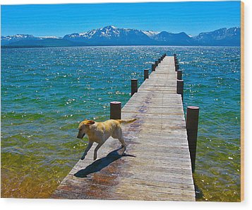 Happy Dog Wood Print by Michael Blesius