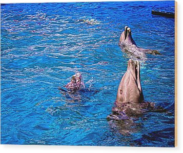 Happy Dolphins Wood Print by Sandra Pena de Ortiz