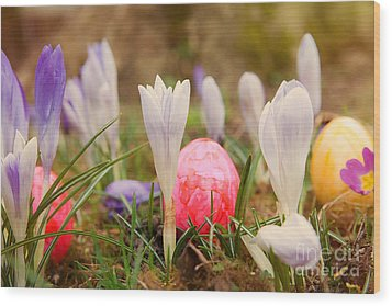 Wood Print featuring the photograph Happy Easter 2 by Christine Sponchia