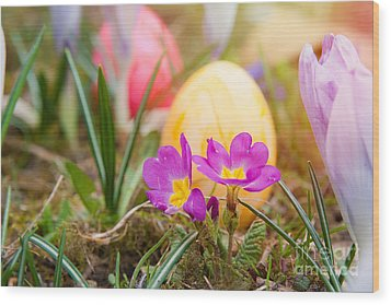 Wood Print featuring the photograph Happy Easter by Christine Sponchia