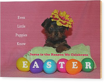 Happy Easter Wood Print by Lorna Rogers Photography