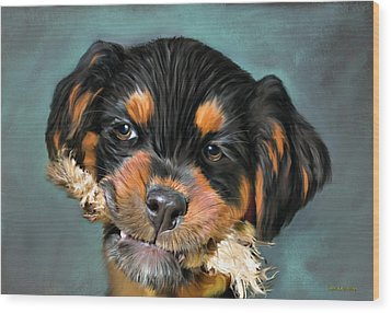 Happy Puppy Wood Print by Angela A Stanton