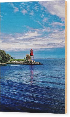 Wood Print featuring the photograph Harbor Light by Daniel Thompson