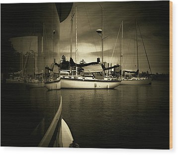 Wood Print featuring the photograph Harbour Life by Micki Findlay