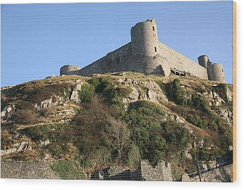 Wood Print featuring the photograph Harlech Castle by Christopher Rowlands