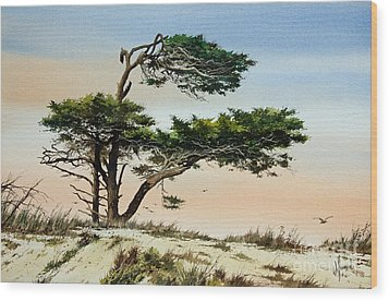 Harmony Of Nature Wood Print by James Williamson