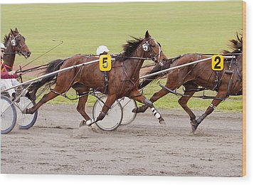 Harness Racing Wood Print by Michelle Wrighton
