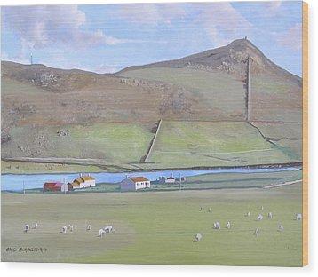 Haroldswick Shetland Islands Wood Print