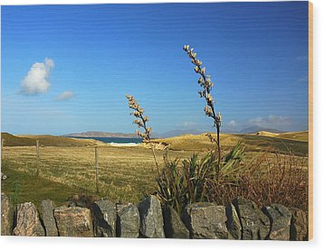 Harris Outer Hebrides Wood Print by The Creative Minds Art and Photography