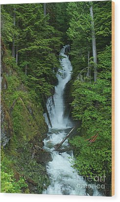 Wood Print featuring the photograph Harrison Lake Road Falls by Rod Wiens