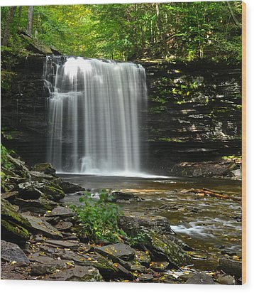 Harrison Wright Falls Wood Print by Frozen in Time Fine Art Photography