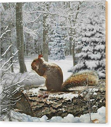 Harry In Winter 2 Wood Print