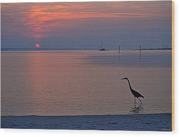 Wood Print featuring the photograph Harry The Heron Fishing On Santa Rosa Sound At Sunrise by Jeff at JSJ Photography