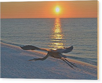 Wood Print featuring the photograph Harry The Heron Takes Flight To Reposition His Guard Over Navarre Beach At Sunrise by Jeff at JSJ Photography