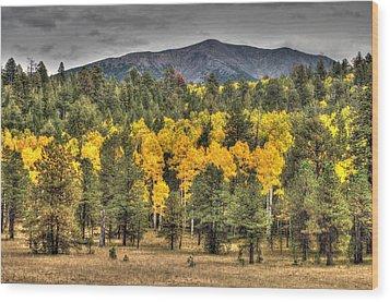 Hart Prairie Wood Print by Tam Ryan