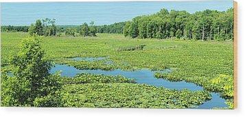 Hartstown Marsh Panorama Wood Print