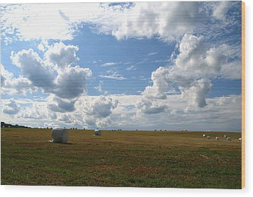 Wood Print featuring the photograph Harvest Blue  by Neal Eslinger