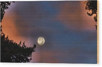 Wood Print featuring the photograph Harvest Moon by Julia Hassett