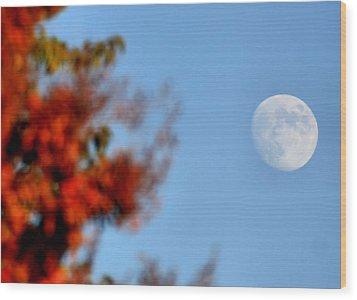 Harvest Moon Wood Print by Karen Scovill