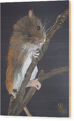 Harvest Mouse Wood Print by Carole Robins