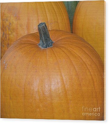 Wood Print featuring the photograph Harvest Pumpkins by Chalet Roome-Rigdon