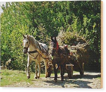 Harvest Time Wood Print by Alison Richardson-Douglas