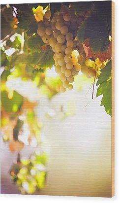 Harvest Time. Sunny Grapes I Wood Print by Jenny Rainbow