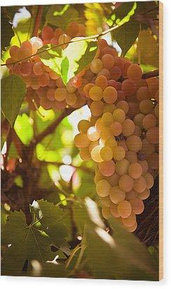 Harvest Time. Sunny Grapes IIi Wood Print by Jenny Rainbow