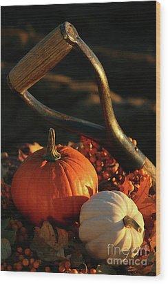 Harvesting For Thanksgiving Wood Print by Sandra Cunningham