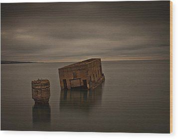 Harvey's Remains Wood Print by Michael Murphy