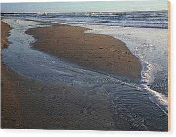 Hatteras Tidal Pools Wood Print by Steven Ainsworth