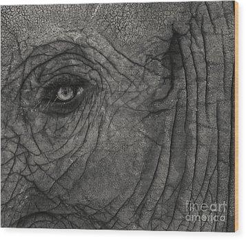 Haunting Eye Wood Print