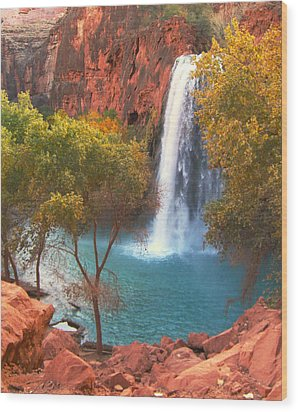 Wood Print featuring the photograph Havasu Falls by Alan Socolik