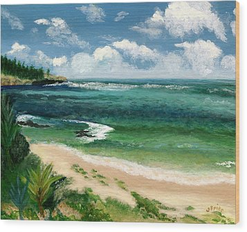 Hawaii Beach Wood Print by Jamie Frier