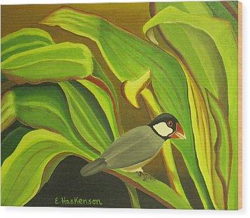 Hawaiian Finch On Tea Leaves Wood Print by Elaine Haakenson