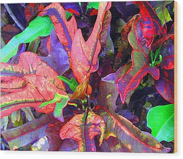 Hawaiian Foliage Wood Print by Jean Hall
